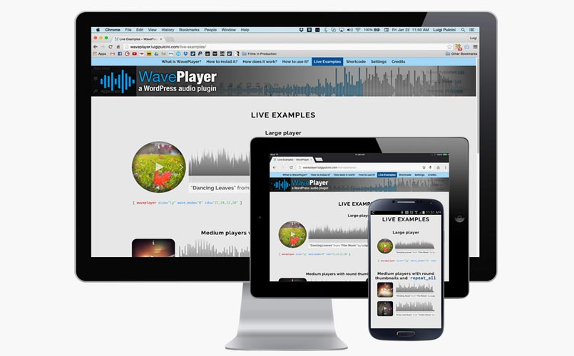WavePlayer - HTML5 Audio Player WordPress Plugin with Waveform and Playlist
