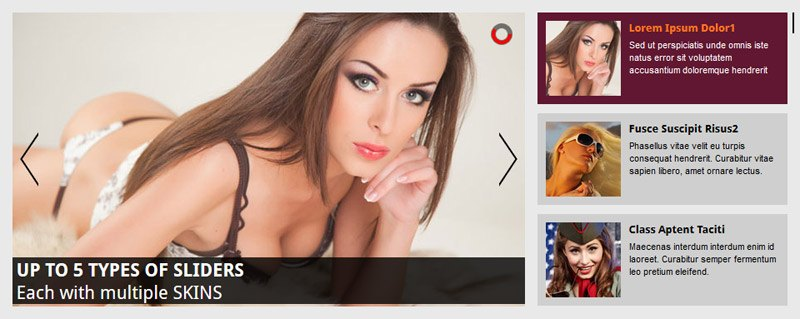 WordPress Image Slider - All In One - Playlist Banner