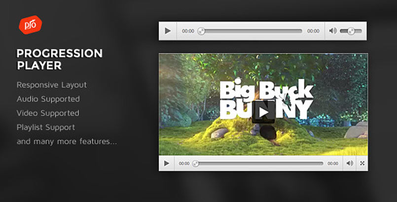 ProgressionPlayer - a Simple Video Player